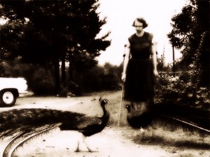 Flannery O'Connor